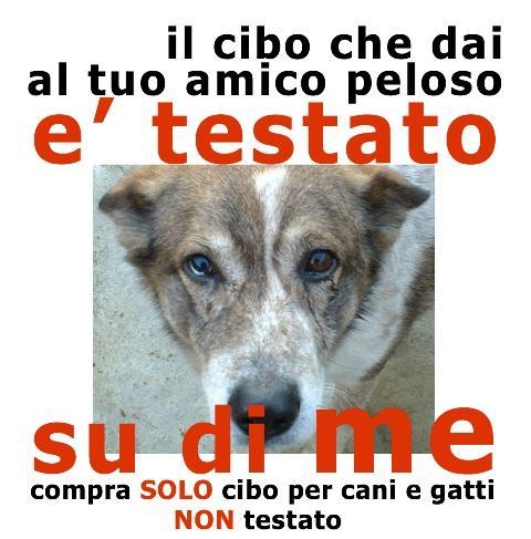 cruelty free - non testate su animali - crocchette per cani opinioni