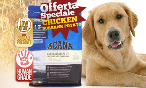 Acana – Adult Dog Pollo & Patate