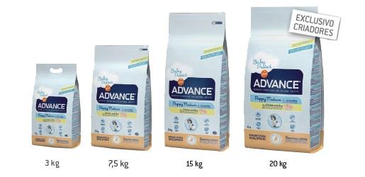 Advance – Medium Adult