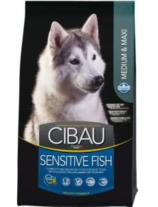 Cibau – Sensitive Fish