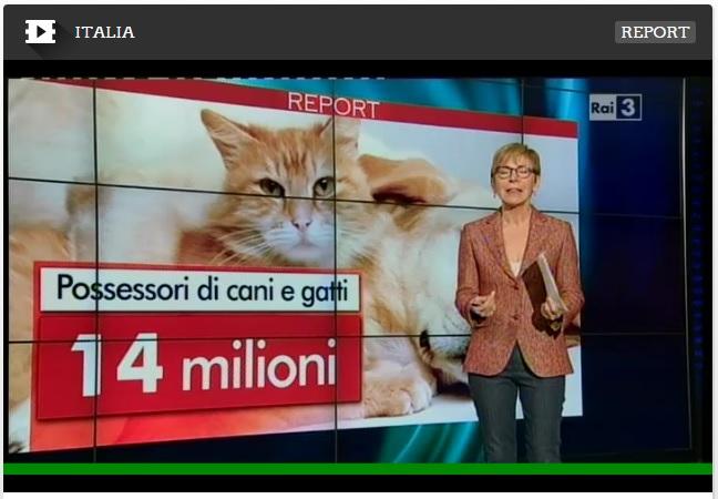 Croccantini per animali, il video di Report di Rai 3