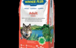 Winner Plus – Adult Holistic
