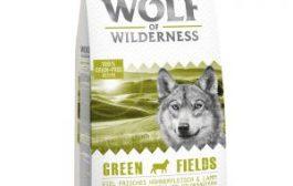 Wolf of Wilderness – Green Fields Agnello