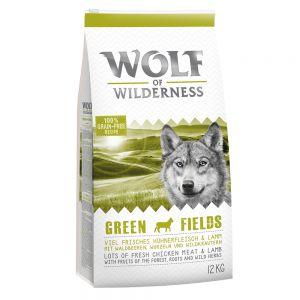 wolf-of-wilderness-green-fields-agnello