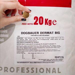 dogbauer