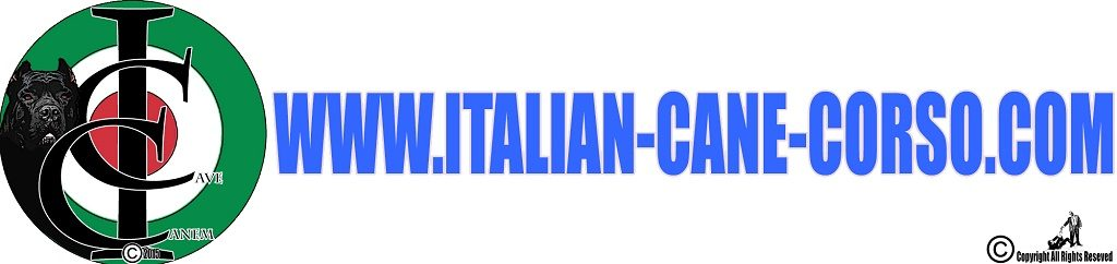 Per gli appassionati del cane Corso Italiano
