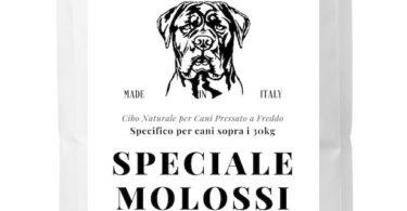 crocchette per cani molossi